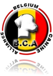 Vign_Logo_BCA