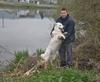 Vign_proprietaire_et_chiens_2012_012